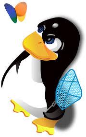 Image result for microsoft logo