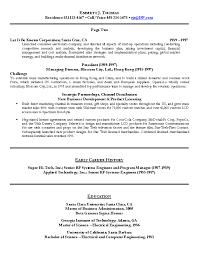 resume sample    technology executive resume    career resumes    sample resume for technology executive