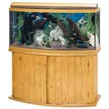 aquarium stand for cichlids tank