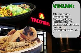 Eating Vegan On The Road | Lifestyle | peta2.com via Relatably.com