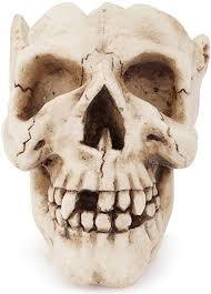 ZnMig Creative Pattern Skull Ornaments Personality ... - Amazon.com