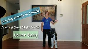 Yang <b>Style</b> Tai Chi, Waving Hands in Clouds; <b>Lower Body</b> Lesson 2 ...