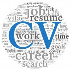 how to make a professional cv or resume