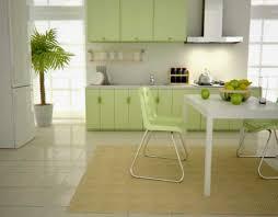 fresh kitchen green walls  kitchen large size elegant simple design of the interior design small