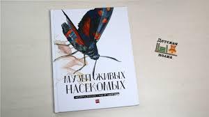 <b>Музей живых насекомых</b> Ф.Лассерр 4+ | Детская книжная полка ...