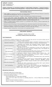 sample resume for bank jobs  seangarrette coentry banking images for marketing consultant resume