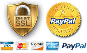 Image result for paypal secure png