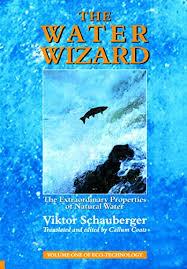 The Water <b>Wizard</b> – The Extraordinary Properties of <b>Natural</b> Water ...