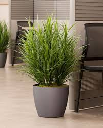 1000 ideas about artificial indoor plants on pinterest boston ferns pothos plant and plants indoor artificial plants for office decor
