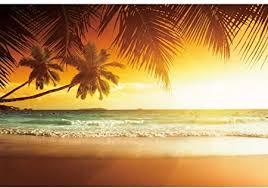 <b>Yeele</b> 3x2.5m Summer Beach Photography Backdrop <b>Tropical</b> ...