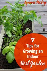 Kitchen Windowsill Herb Garden Top 25 Ideas About Window Herb Gardens On Pinterest Window