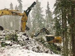 EXCEEDING THE VISION: FOREST MECHANISATION OF THE ...
