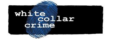 essay on the concept of white collar crime