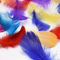 100X Goose Feathers 8-12cm Event Feather DIY Crafts <b>Beautiful</b> ...