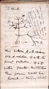 "「""On the Origin of Species""」の画像検索結果"