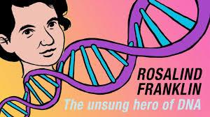 Resultado de imagen de rosalind franklin education