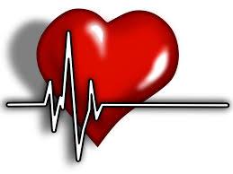 Znalezione obrazy dla zapytania heart clipart