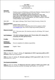 what skills to list on a resume it skills example on a cv skills list of professional skills for resume resume sample skills list top skills to put on your