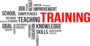 what skills do you need to become a medical transcriptionist mtacc