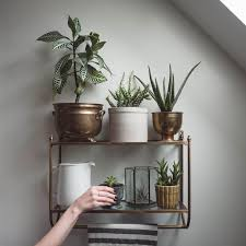 1000 ideas about window plants on pinterest plant shelves plant stands and window shelves charming office plants