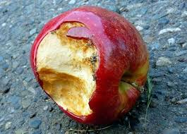 Image result for rotten apple