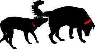 Bildresultat för hundmöte