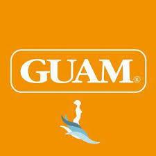 <b>GUAM</b> Armenia - Posts | Facebook