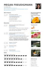 elementary teacher resume samples   visualcv resume samples databaseelementary teacher resume samples