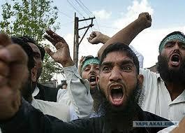 Исламисты в Америке