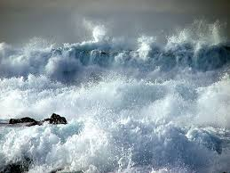 Image result for the ocean orna ross images