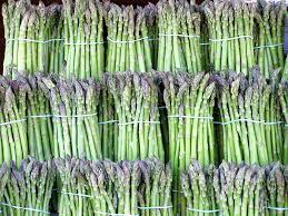 Garden asparagus