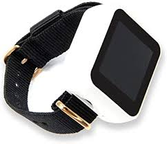 LILYGO TTGO T-Watch GPS and Lora Version ... - Amazon.com
