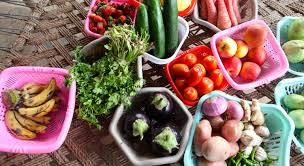 <b>Fruits and vegetables</b> crucial for healthy lives, sustainable world ...