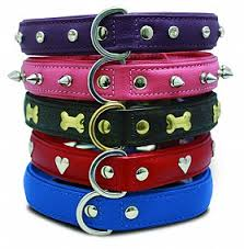 Collections | Amazing <b>Leather Pet Products</b> | Angel <b>Pet Supplies</b>