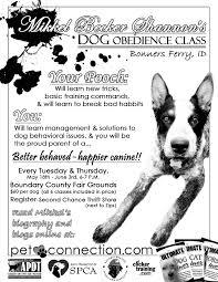dog training by mikkel becker of coeur d alene is coming to mikkel comes highly recommended by karen from a family dog