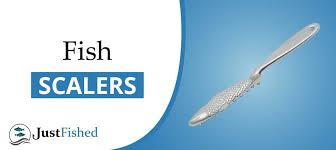 Best <b>Fish Scalers</b> | The Complete <b>Fish</b> Scale Removal <b>Guide</b>
