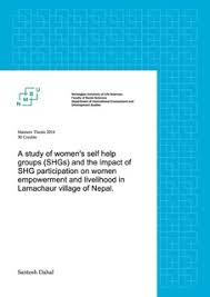thesis on self help groups Imhoff Custom Services     self help groups  Master thesis