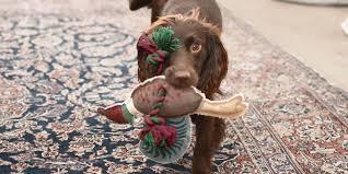 <b>Pet Toys</b>   Sophie Allport