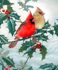<b>AZQSD</b>,<b>Diamond Embroidery</b>,<b>Animal</b>,Red parrot,5D Diamond ...