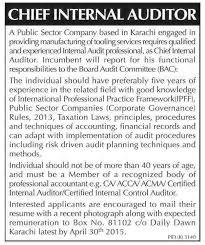 chief internal auditor jobs required in public sector internal auditors job description