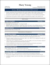 executive summary writing hr executive summary template design com professional resume template services hr executive summary template design com professional resume template