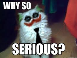 Y SO SERIOUS? - Why So Serious Cat - quickmeme via Relatably.com
