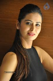 Image result for Meenakshi Dixit