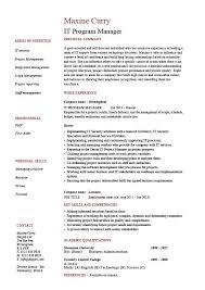 it program manager resume  sample  cv  job description  technology    it program manager resume  sample  cv  job description  technology  project  career history  format