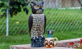 10 Best <b>Bird Repellents</b> Reviewed and Rated in 2020