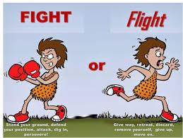 leadership by virtue leadership responsiveness fight or flight