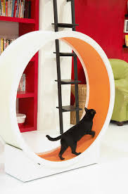 1 the catwheel chic cat furniture