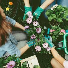 <b>Весенние цветы</b>: что посадить в марте, идеи и советы ...