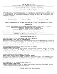 Example Resume  Resume Objectives For Career Change  sales     Binuatan