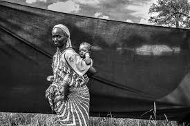 refugee essay refugee essay by taihlajuliee